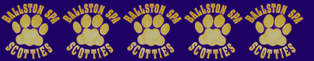Ballston spa banner