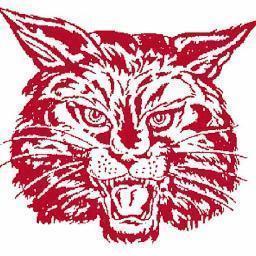 Wildcat_logo