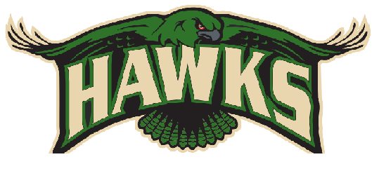 Youth hawks logo1